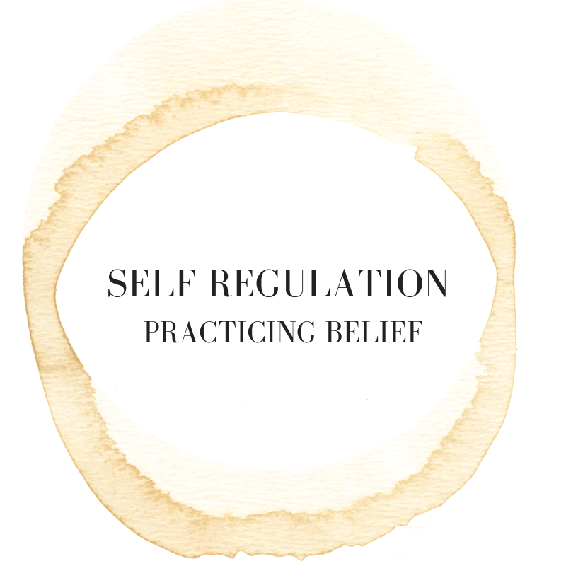 self regulation.png