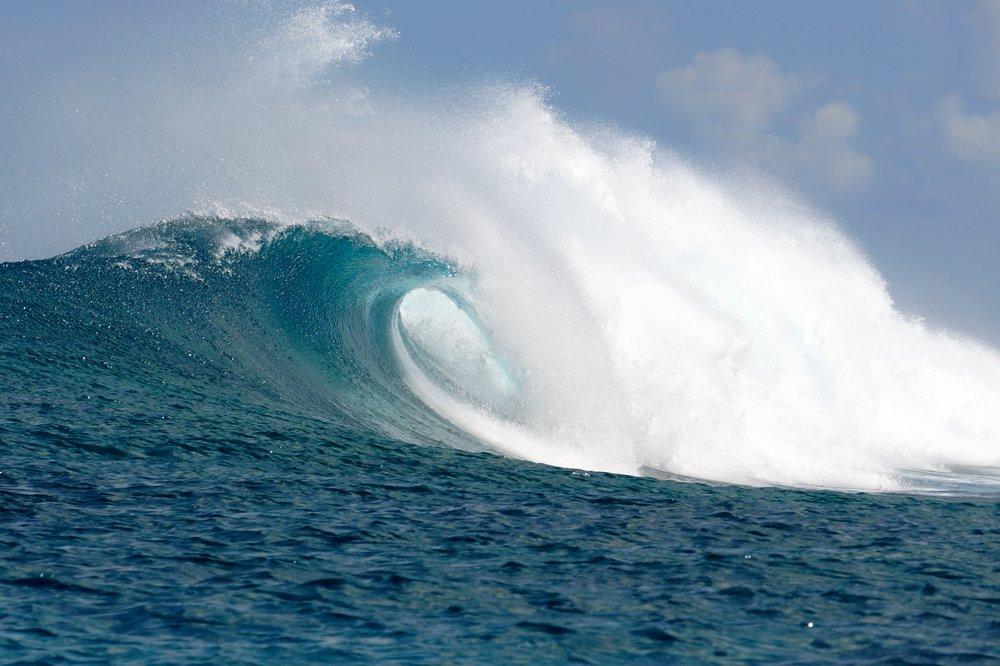 Ayada_Maldives_Surf_Perfect_Waves_Wave_Collective.jpeg