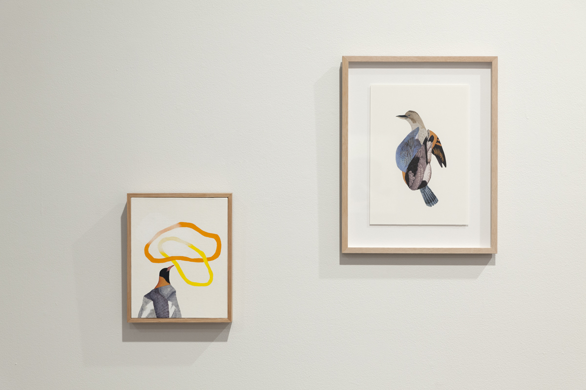 Installation view,   Bittersweet    Hazelhurst Regional Gallery and Arts Centre, Sydney  Pictured:   Postcard 14   and   Birdland 3  , 2015  Image Credit: Silversalt Photography