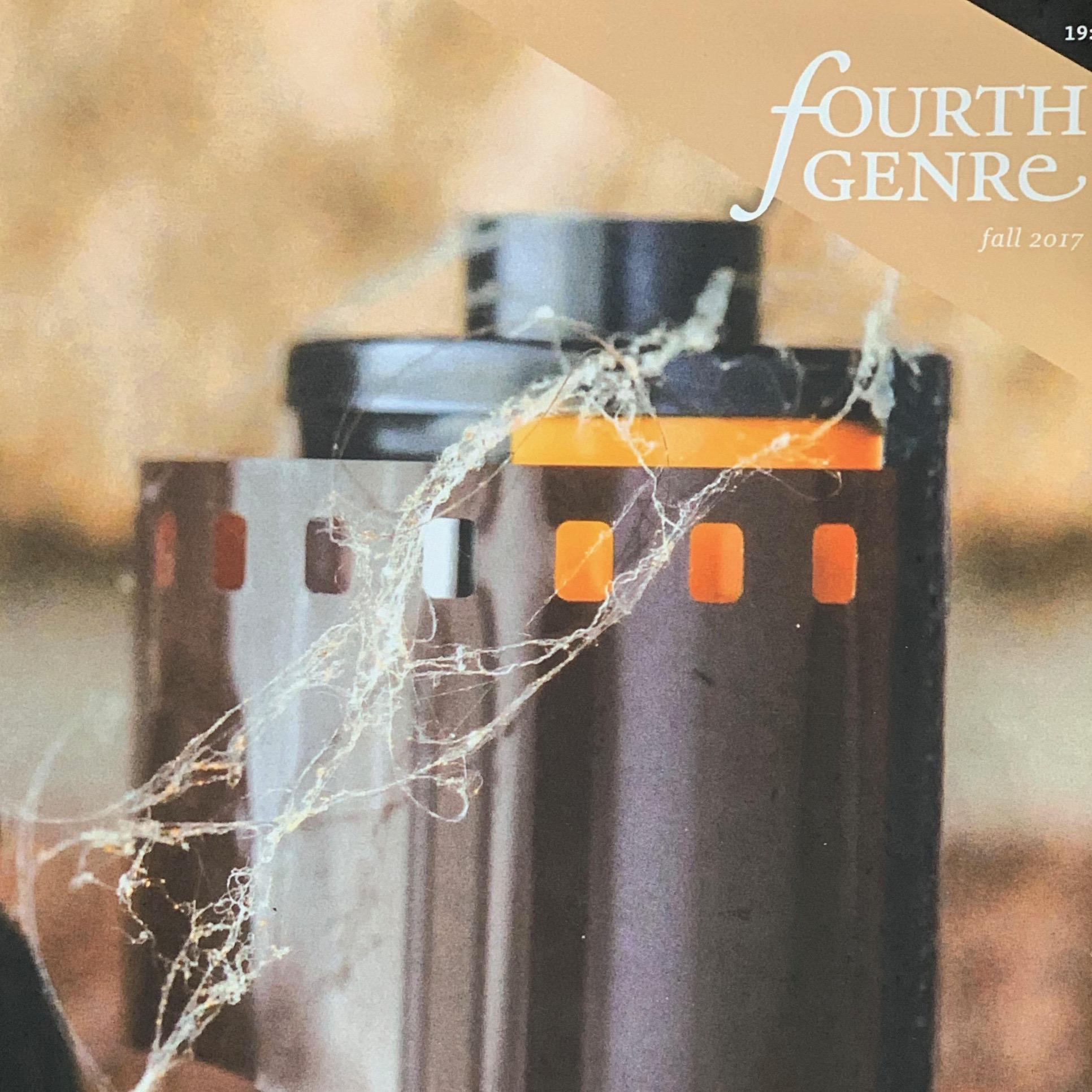 fourth genre—