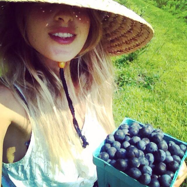 Bluberry sarah harvest.jpg