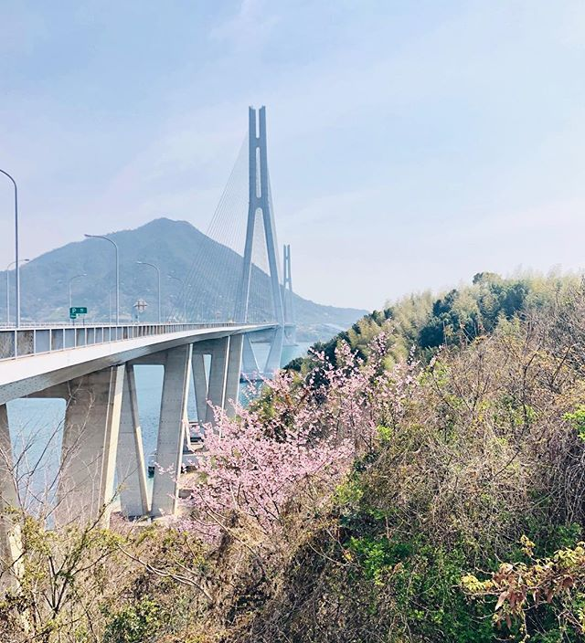 The Shimanami Kaido Cycling Route. Crossing seven bridges between Onomichi and Imabari. Breathtaking!  #shimanamikaido #speedbike #familychallenge #differentkindofislandhopping #explorejapan #70km #u2onomichi