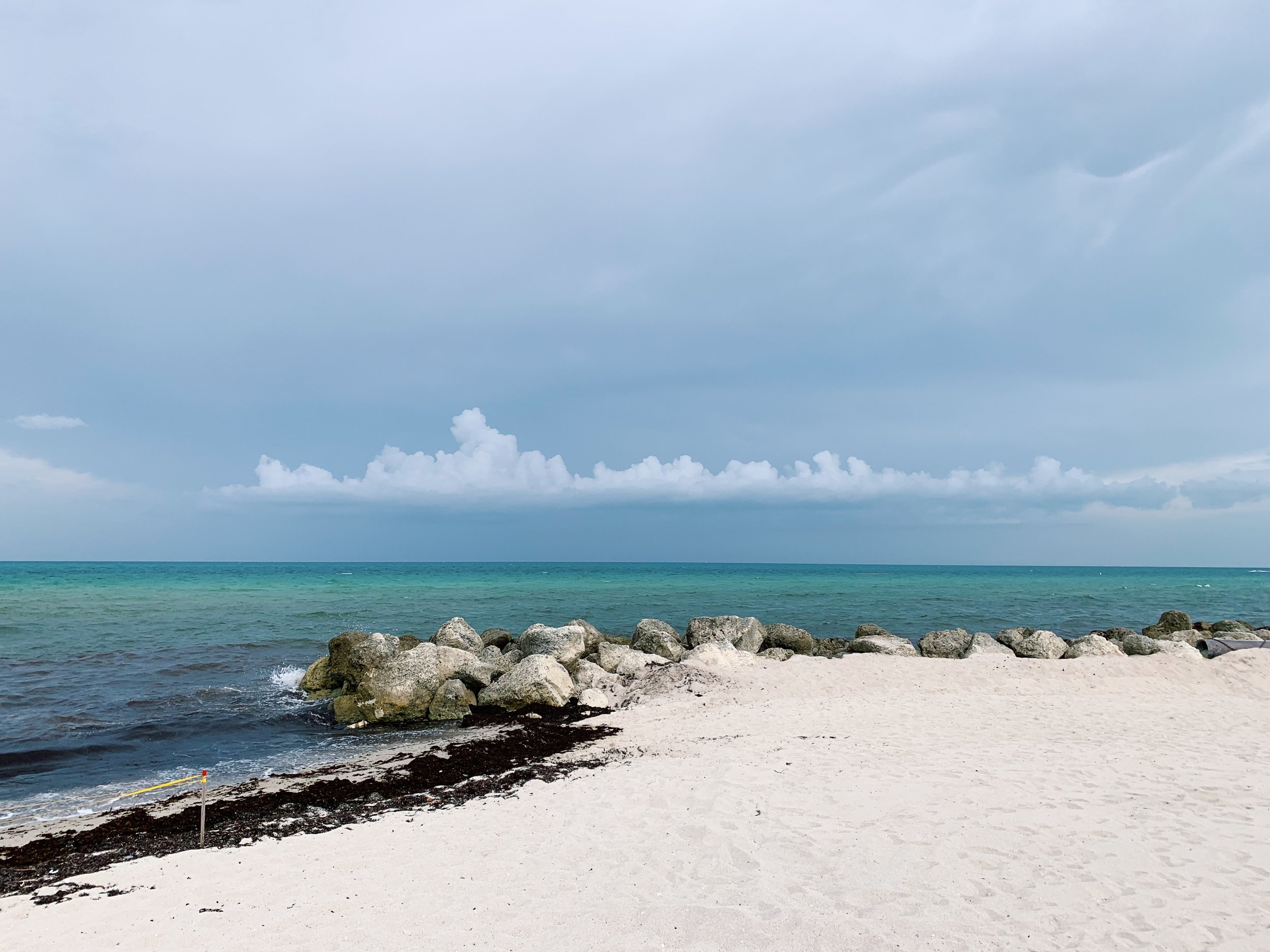 All-natural beauty | Miami Beach