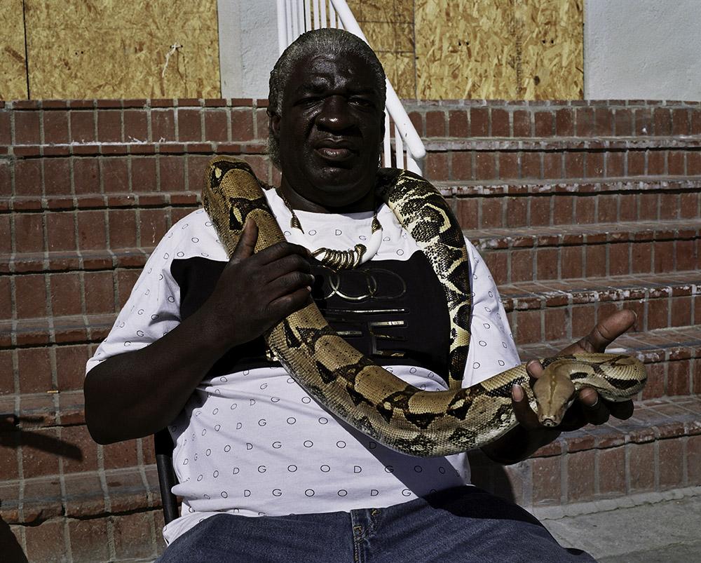 14-snake.jpg
