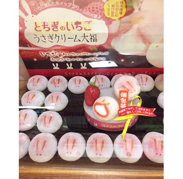 栃木での昨年度のセミナー参加者との個別面談終了です。 栃木といえば宇都宮餃子ですが、とちおとめイチゴも有名です。