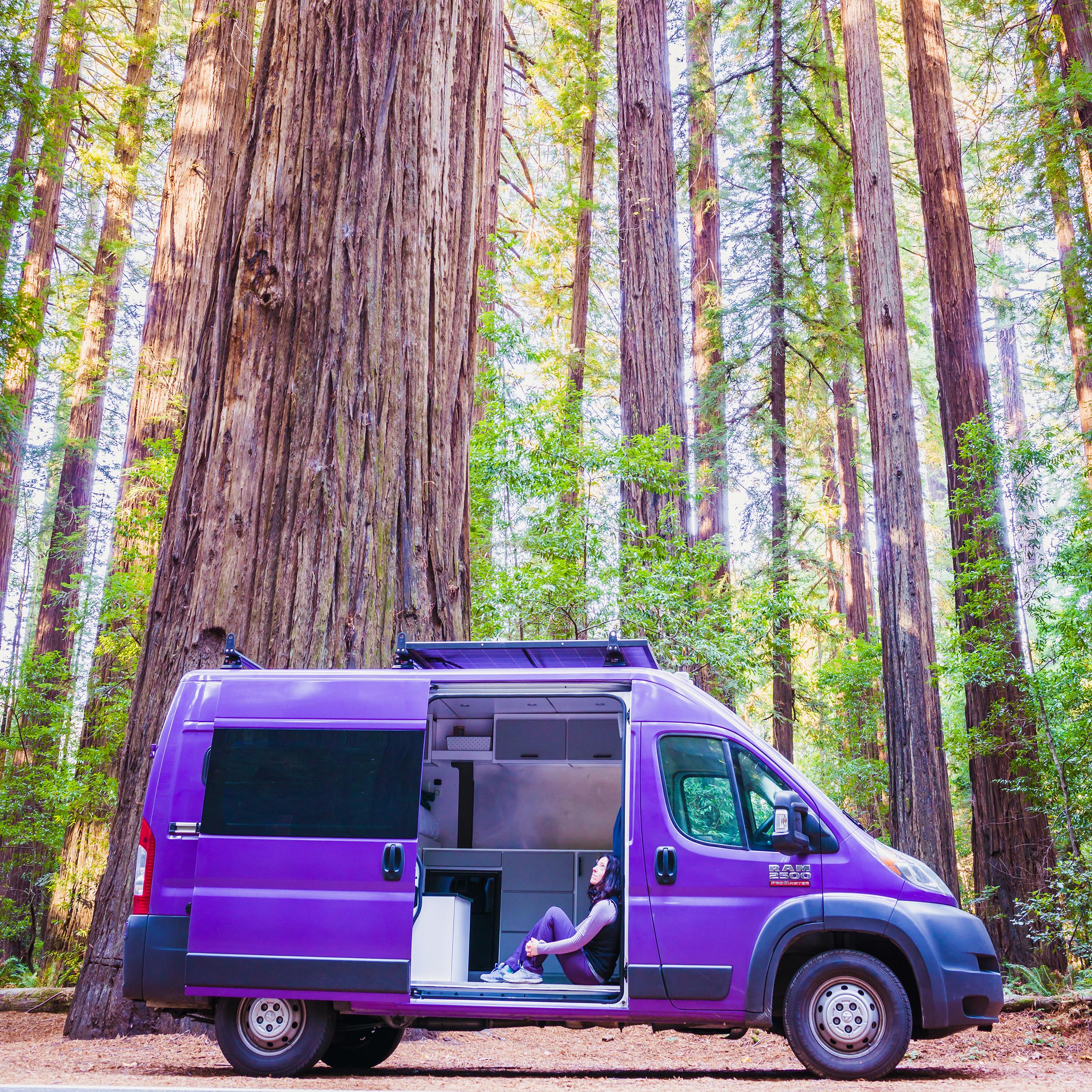 California | Redwood National Park