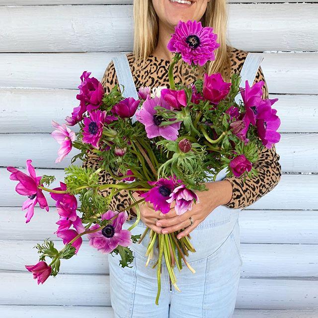 Love Love Love 😍 @redlandsfreshflowers bringing in the goods 🙌