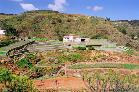 Huertos en San Antón y cultivo de berros en manantiales de mampostería formando terrazas.