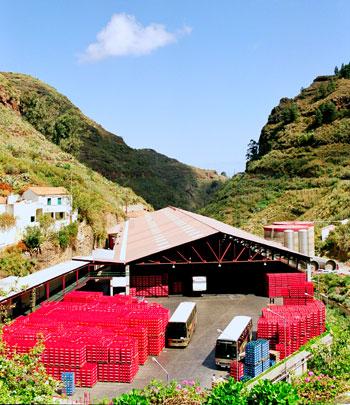 Embotelladora y almacén de Aguas de Firgas en el barranco de las Madres, cabecera del barranco de la Virgen en el corazón del Parque Rural de Doramas.