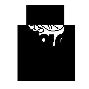 Solo Gozar Logo