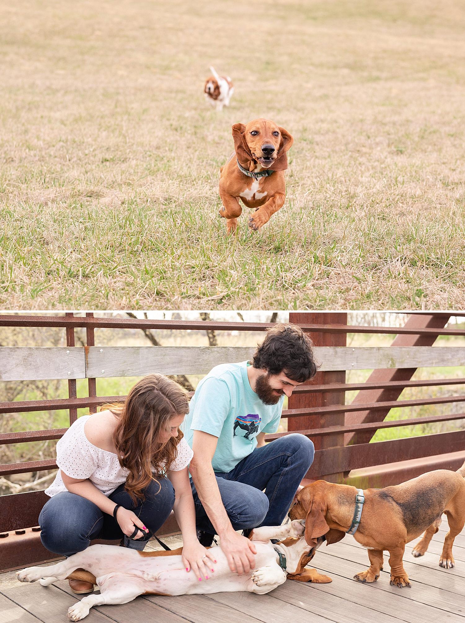Matthew and Callie Roanoke Engagement Photo_0451.jpg