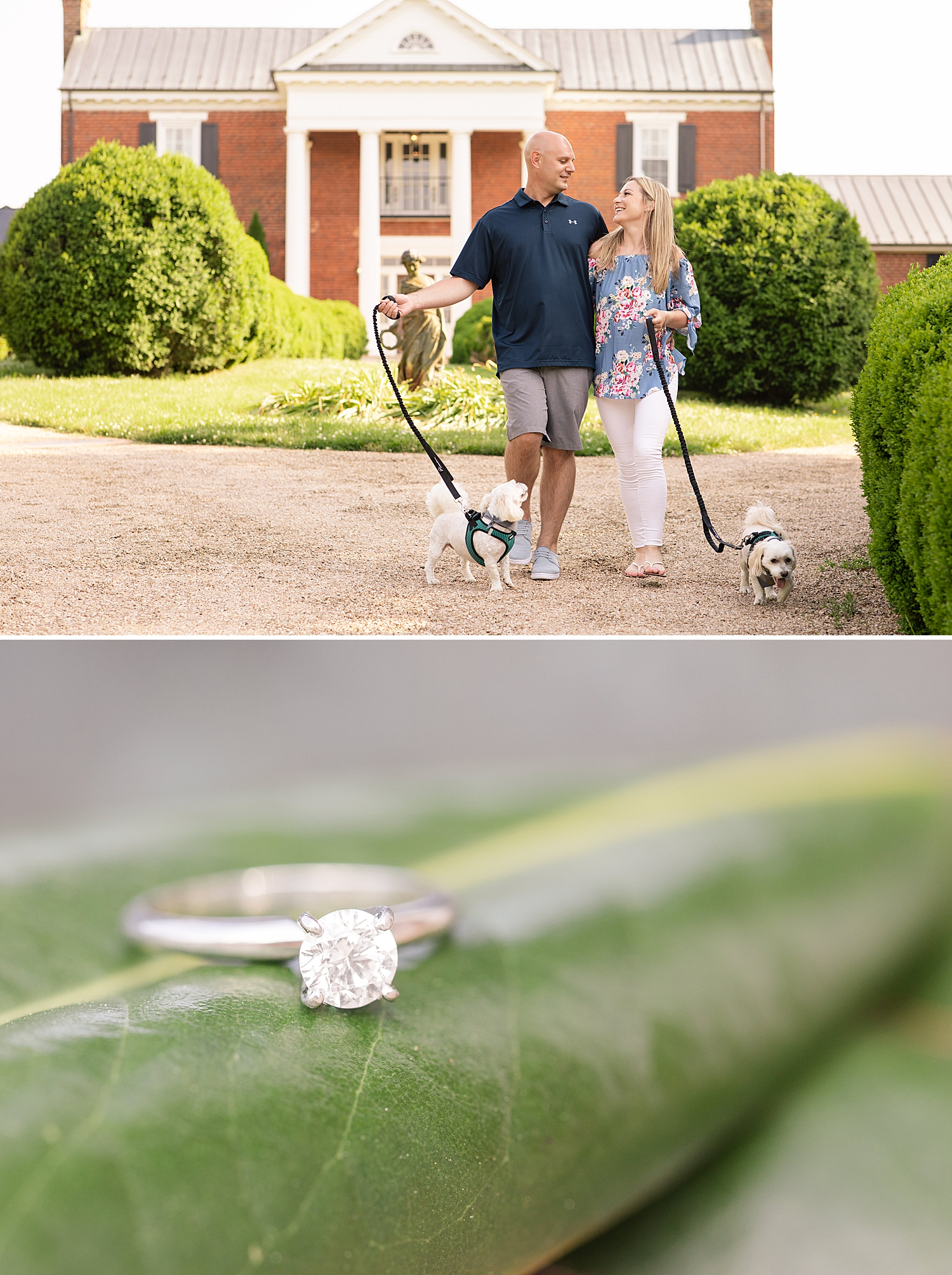 West Manor Estate Engagement Session Photo Virginia Wedding Photographer_0794.jpg