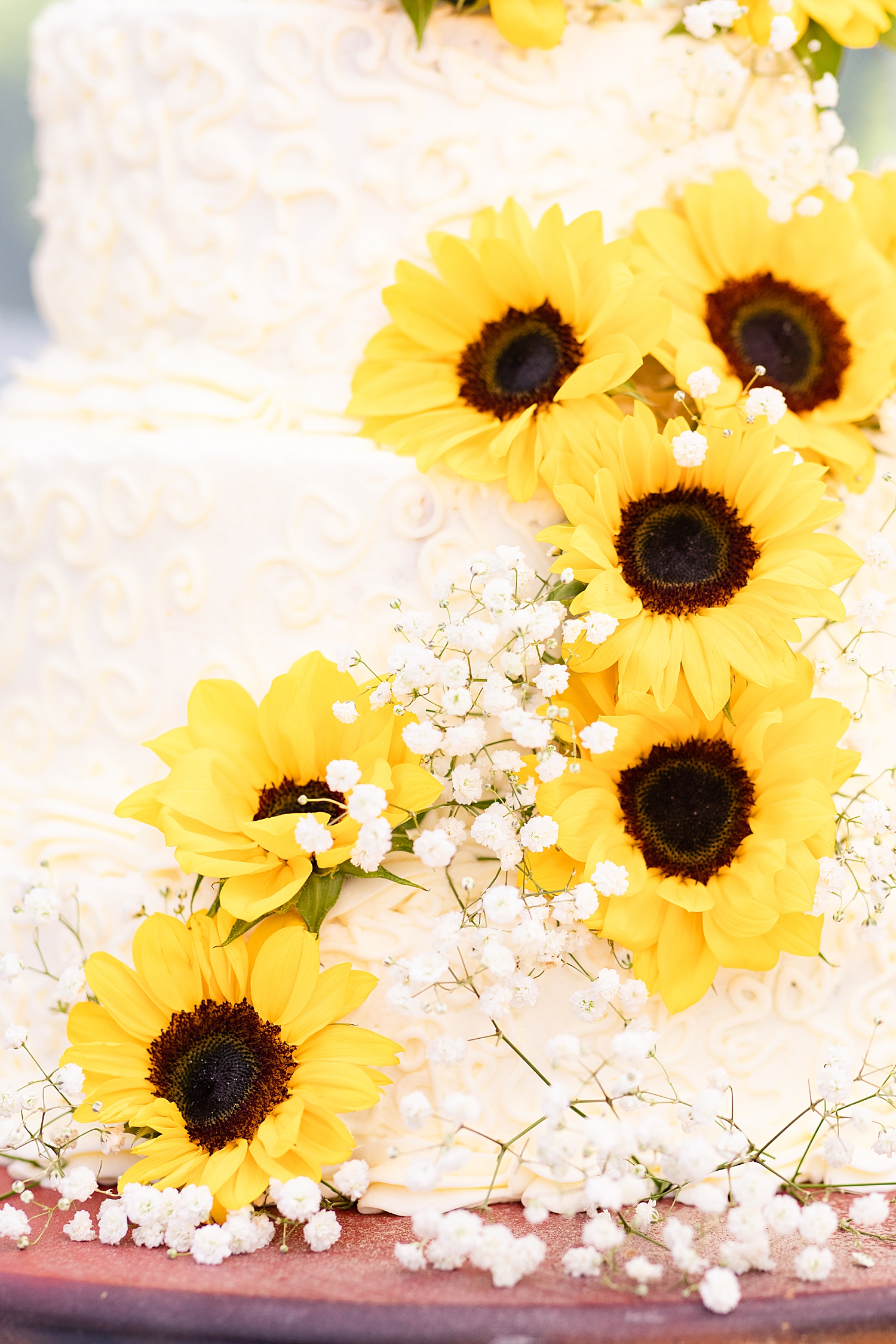 Intimate Spring Virginia Wedding Photo_0899.jpg