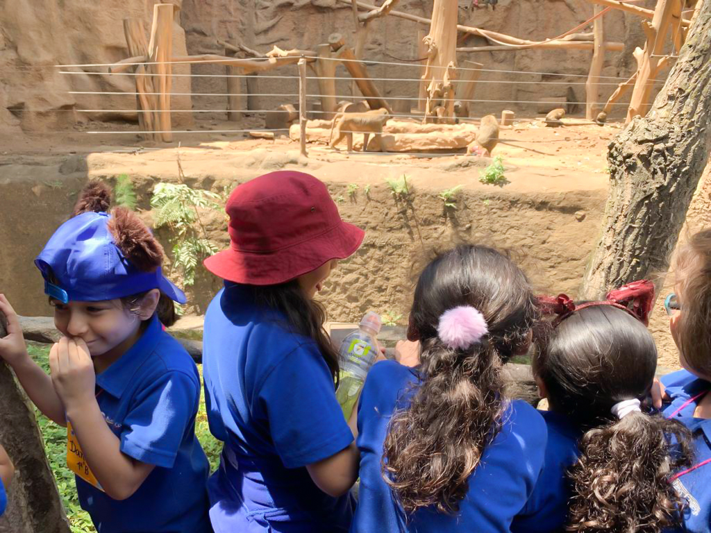 Visita al Zoo Primero Primaria - Marzo