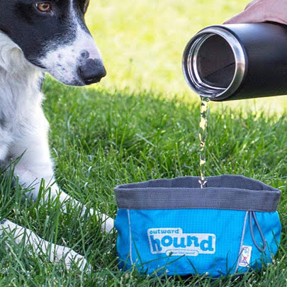 outward-hound-port-a-bowl-dog-travel-bowl-2.jpg