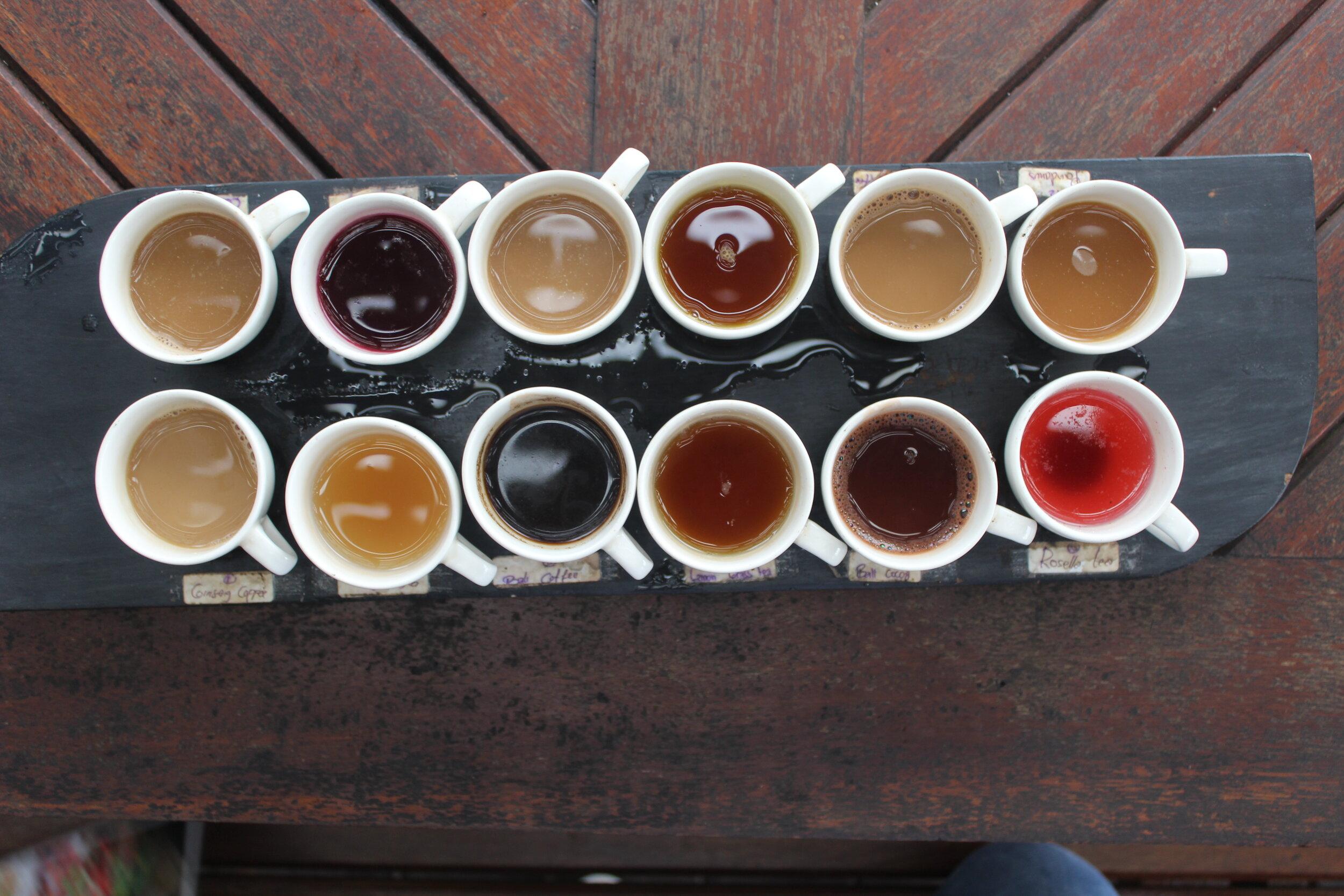Taste testing authentic BALINESE coffee & Tea