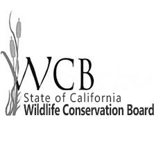 logo-WCB.max-752x423.png