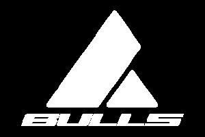 BULLS_W.png
