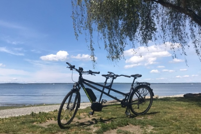 Gepida Thoris XT10 Electric Tandem: The Power of Two