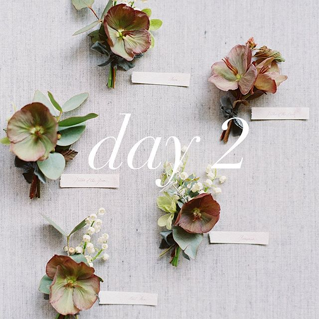 What will you learn on day 2 of our floral masterclass with @bloomsbybreesalee? Here is just some of what the day will look like!⠀⠀ ⠀ - flat lay styling and cake decorating⠀ - lunch and destination weddings discussion⠀ - how to build a floral installation using wire⠀ - tablescape design ⠀ - photoshoot⠀ ⠀ Whether you're a floral novice or a pro, join us for this intimate 2-day workshop to elevate your technique and spend a couple of days reviving your inspiration! Register for the July 16-17th workshop through the link in our profile ✨ #sandiegoflorist #floralmasterclass #floralworkshop #creativeworkshop #lifeofaflorist #weddingflorist #sandiego #florist #workshops