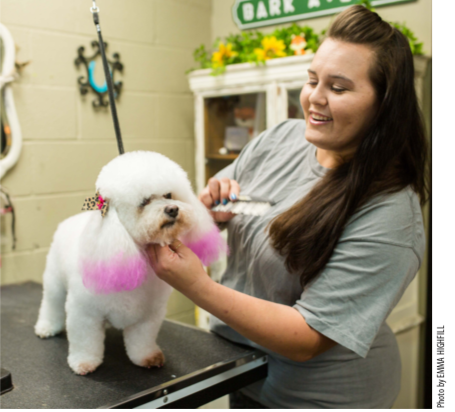 Placing little homemade bows on dogs' ears after grooming created a surge in referrals and quickly turnedBark Avenue Salon into a profitable business.