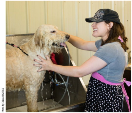 An on-site groomer is part of the total package offered at Taj Ma Dog.