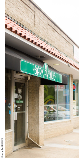 Bark Avenue Salon has seen triple digit business growth every year since it opened four years ago.