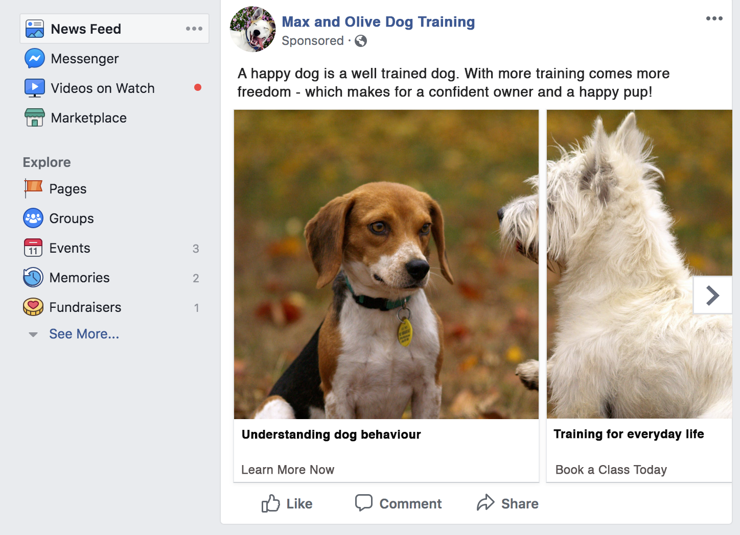 An advertisement such as this example may target users who included dog or pet-related stores, items, or activities in their interests