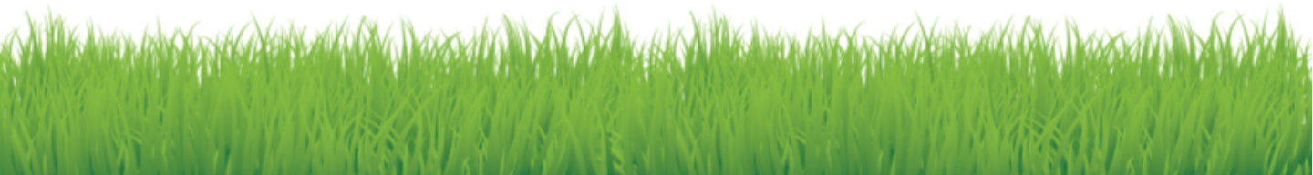 ForeverLawn Footer.png