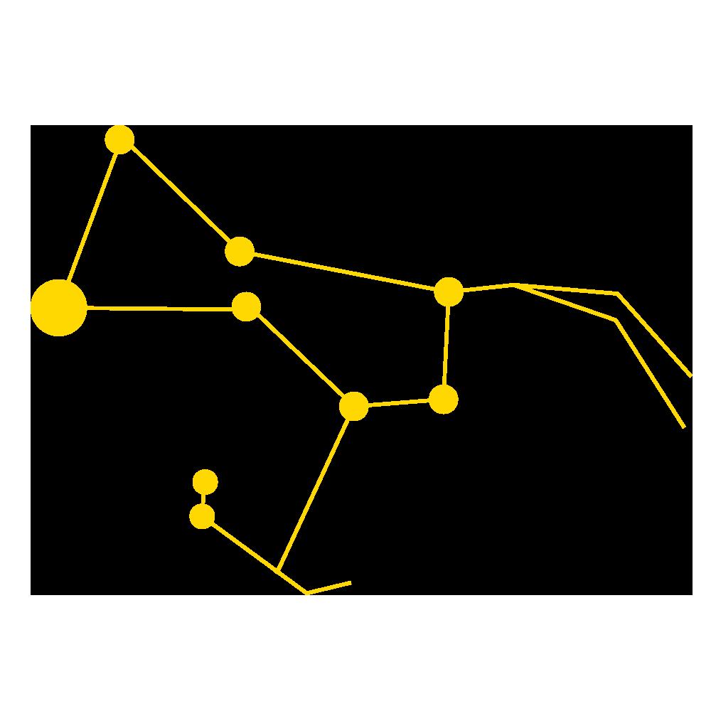 RIGIL_yellow.png