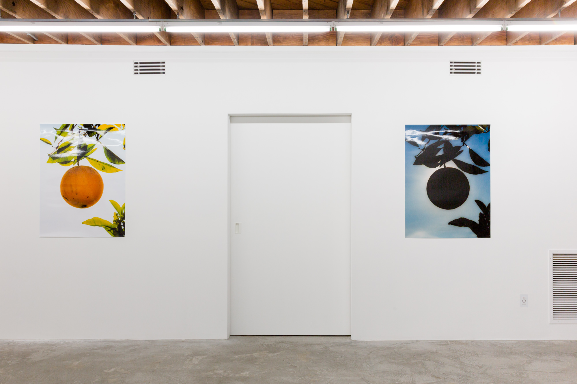 Daniel Terna and Evan Whale_LY Gallery_Exhibition Views_Daniel Terna_2019_websize-1.jpg