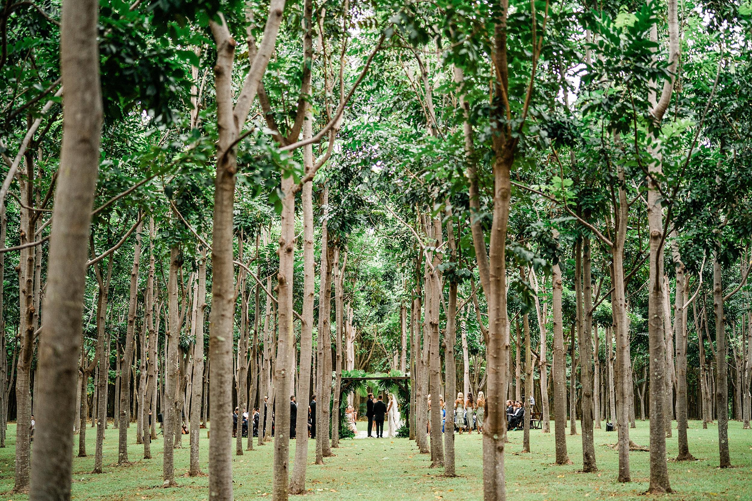Na 'Aina Kai Botanical Gardens Kauai Hawaiian Wedding Stewart & Connie Photography_0012.jpg