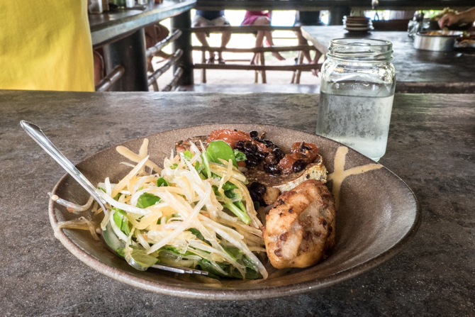 Summer rolls (eaten), Rellenong Saba (stuffed banana), pan fried fish with homemade blackbean sauce, green papaya salad. YUM!