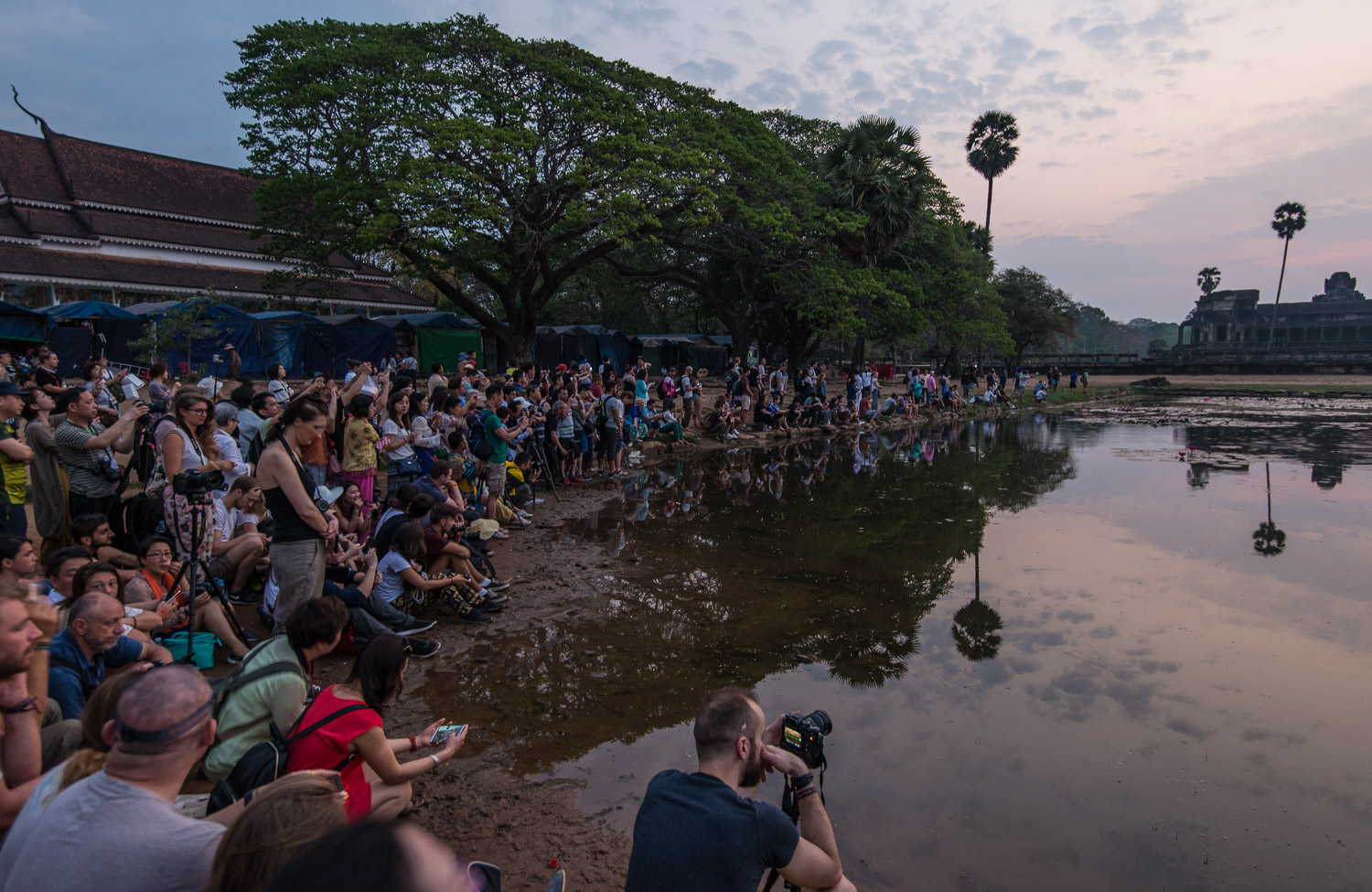 The real Angkor Wat sunrise: Crowds wait anxiously to greet the sun