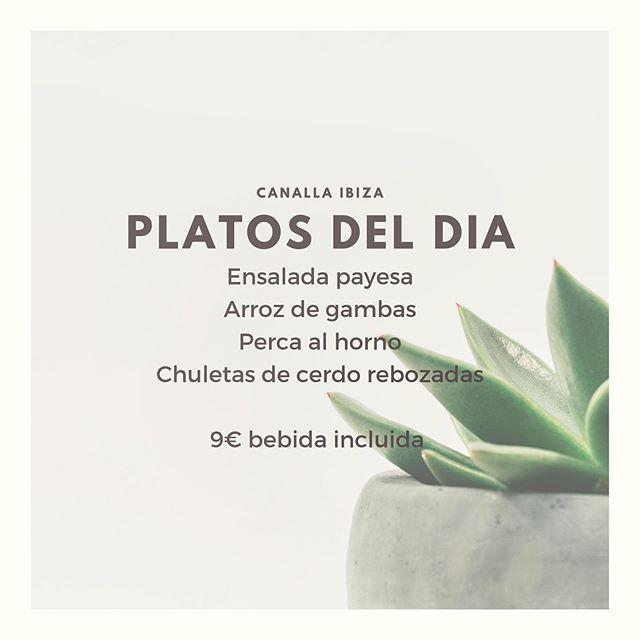 Empezamos esta nueva semana con nuestra propuesta de platos del día a medio día, 9€ bebida incluida. Nuestra cocina de tapas está abierta todo el día! A por la semana, CANALLAS! #sanoyrico #sano #platodeldia #ibiza #ñam #canallaibiza #canallaerestu