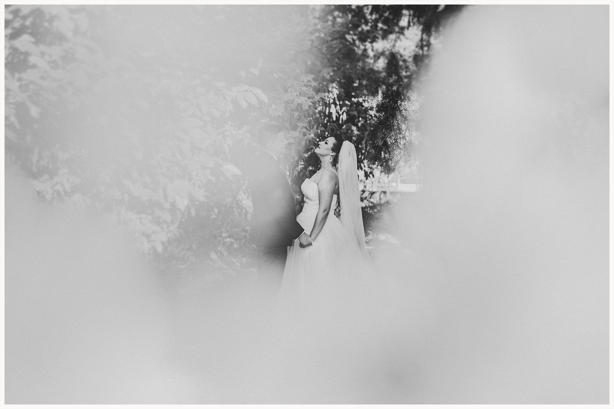 www.dreamsanddreamers.com-fotograf-nunta-timisoara-diana-sebastian-423.jpg