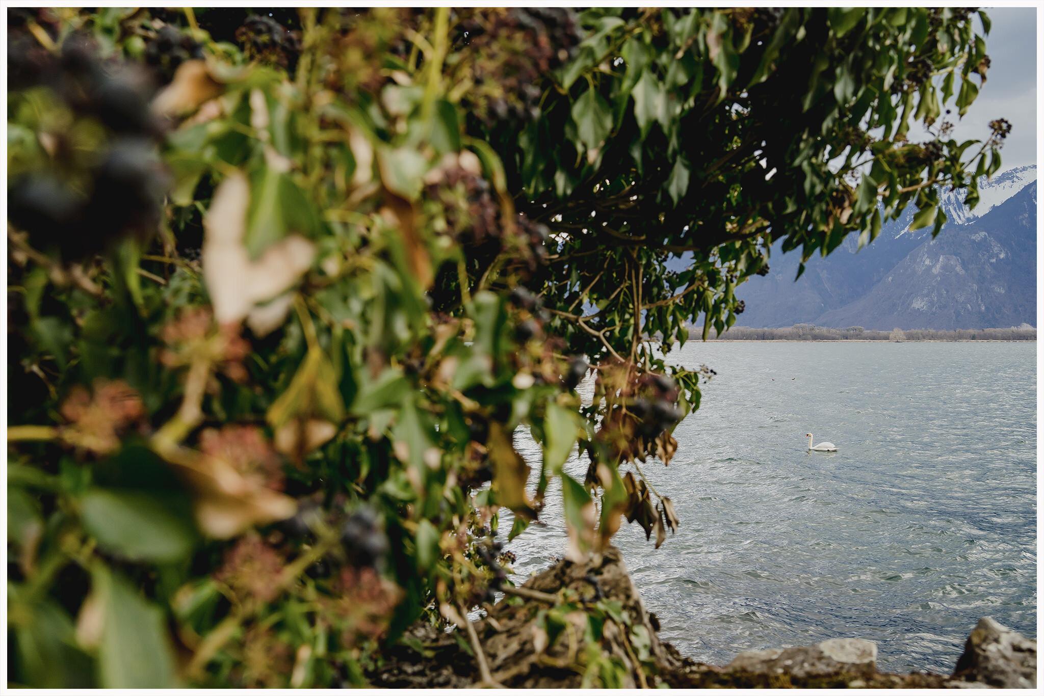 dreamsaanddreamers.com-fotograf-nunta-romania-18.jpg