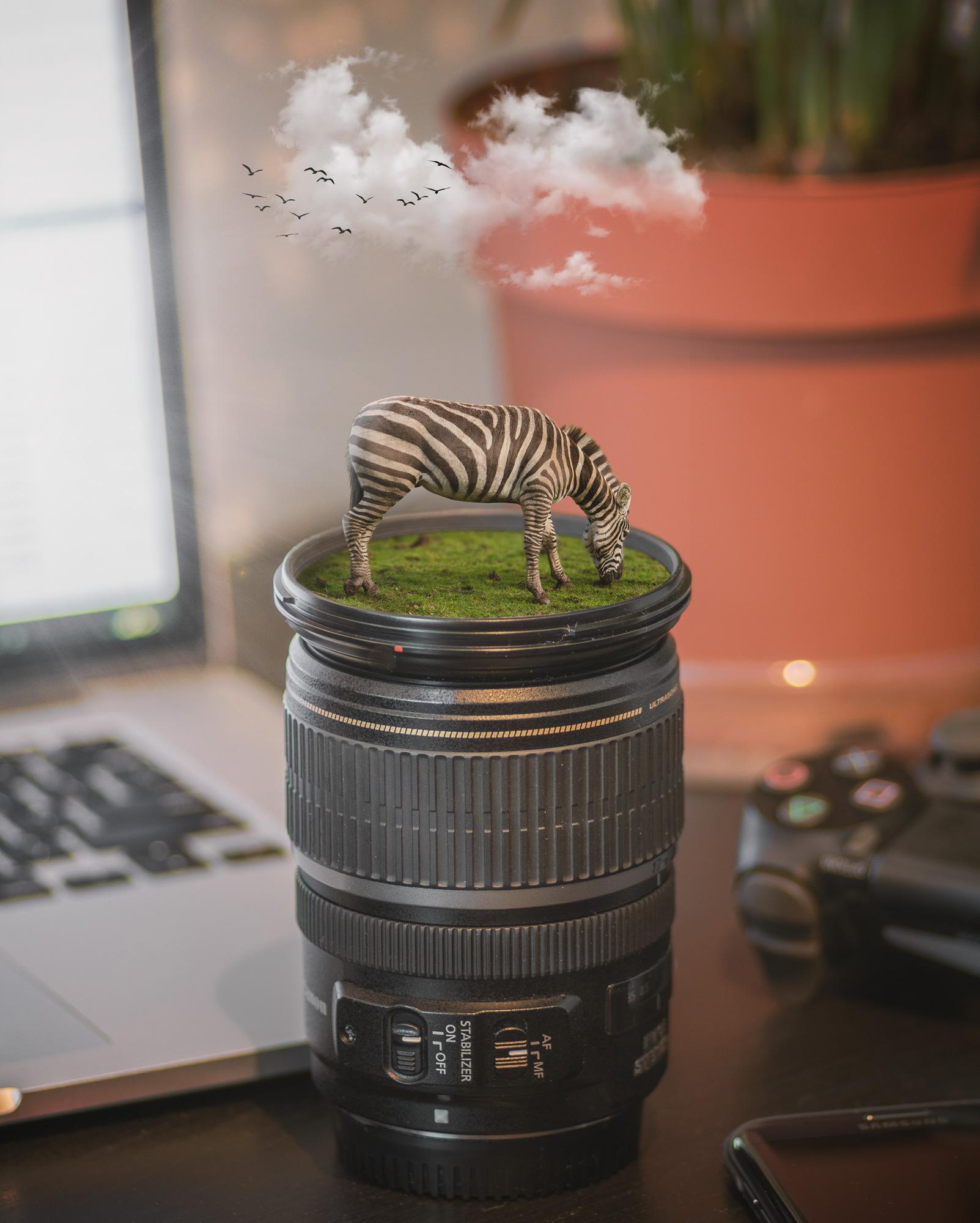 capture-life.jpg
