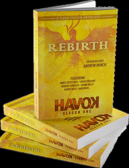 rebirth-bookstack LR.png