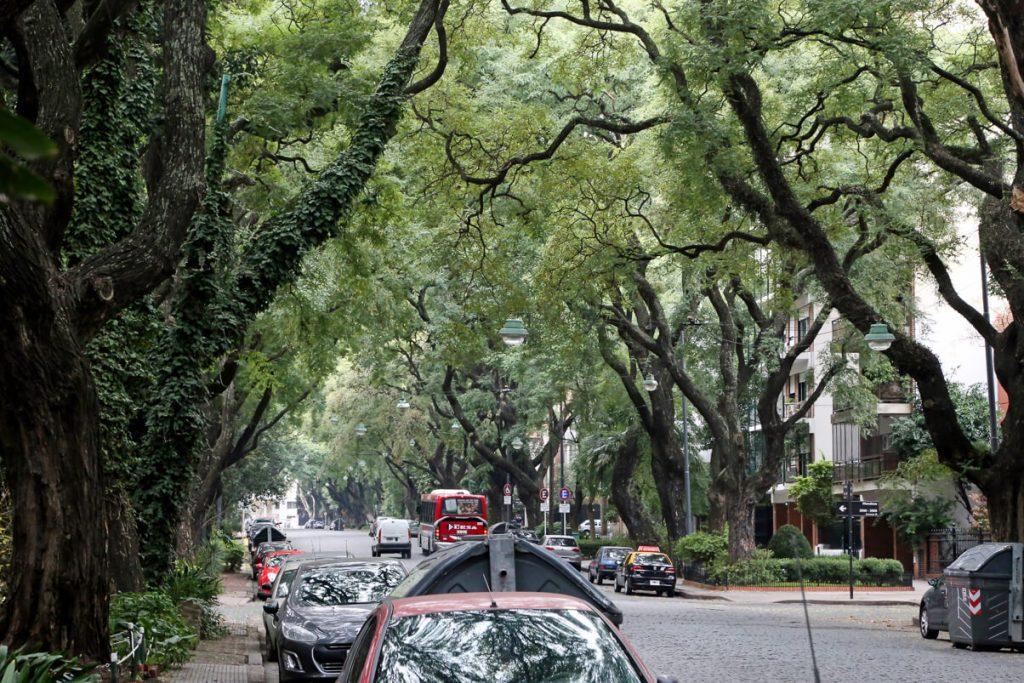 A green canopied, cobblestone street in the Buenos Aires neighborhood Belgrano