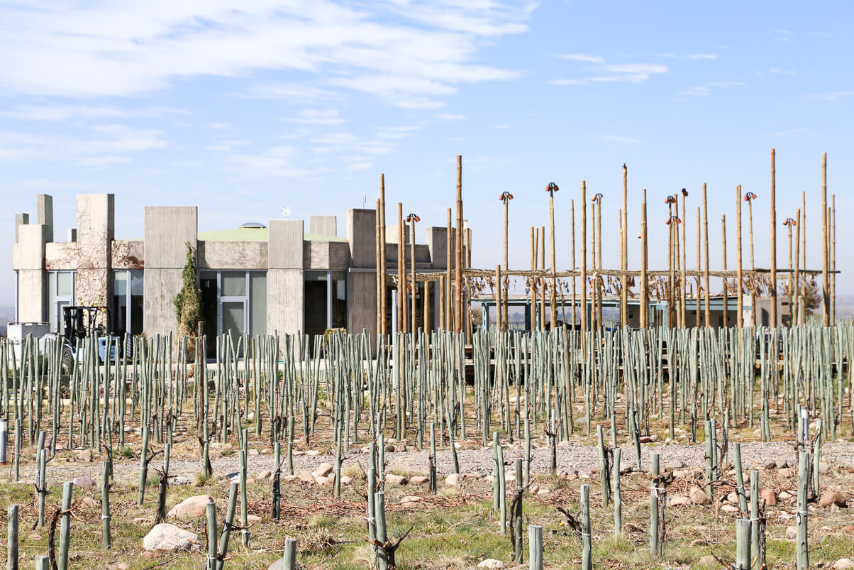 SuperUco winery on the Vines in Valle de Uco
