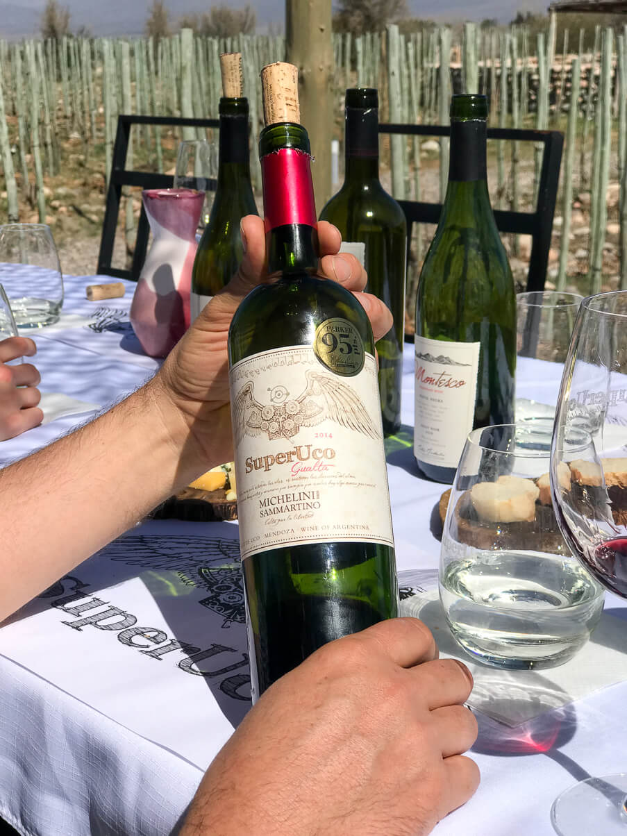 Wine tasting in the Uco Valley Argentine