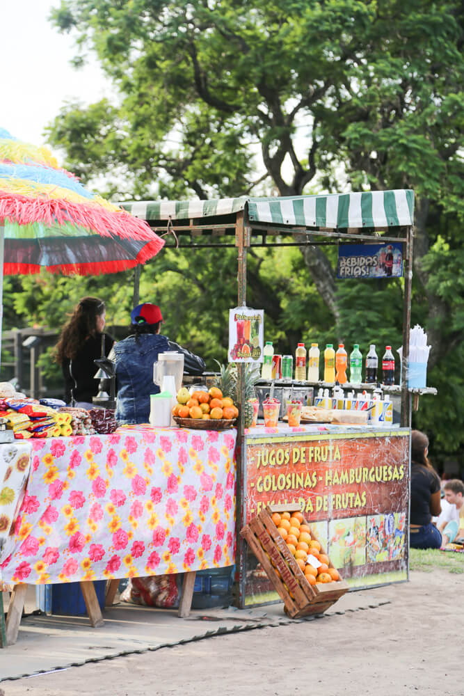 Guide to visiting the Recoleta market