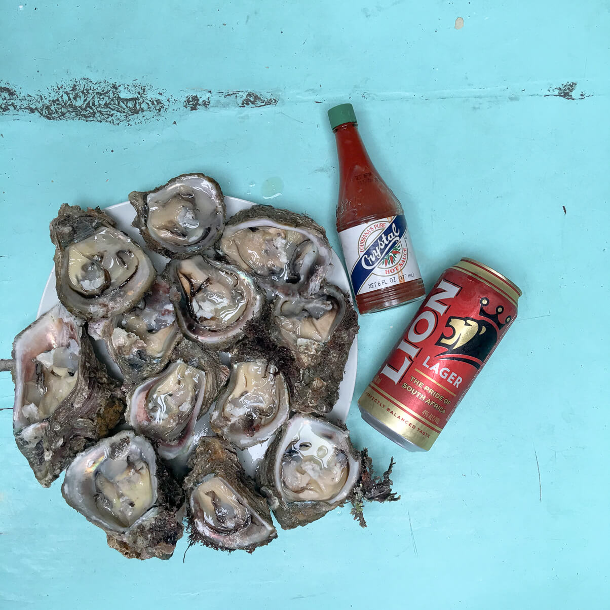 Fresh caught oysters on the Wild Coast