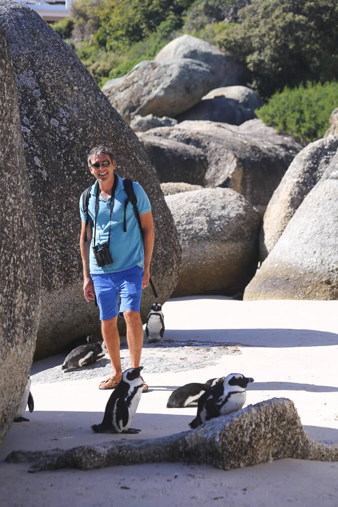 seeing the penguins at Boulders Beach near Cape Town