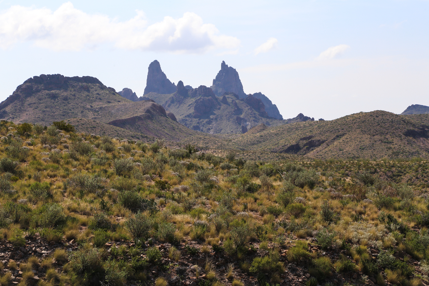 A Complete Guide to Visiting Big Bend National Park — Sol Salute
