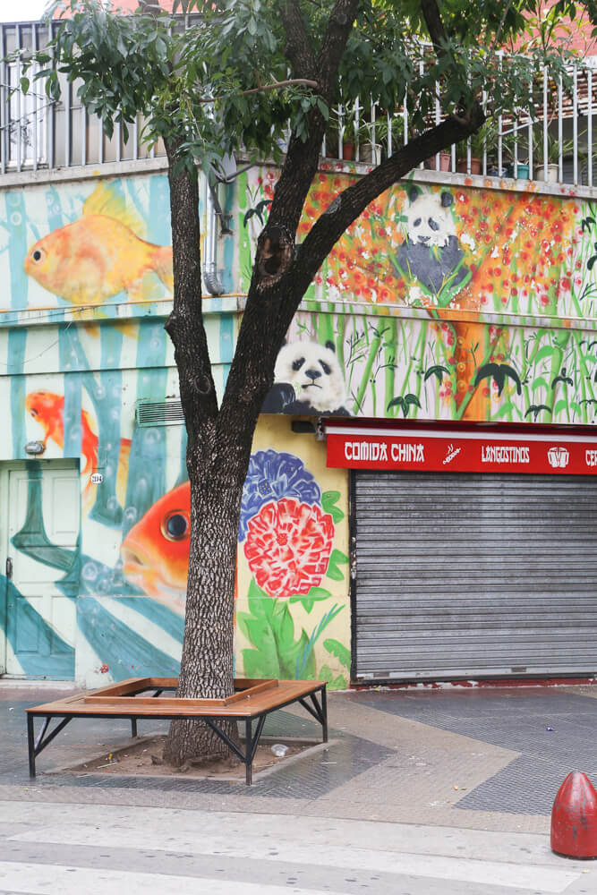 How to visit Chinatown Buenos Aires, Barrio Chino