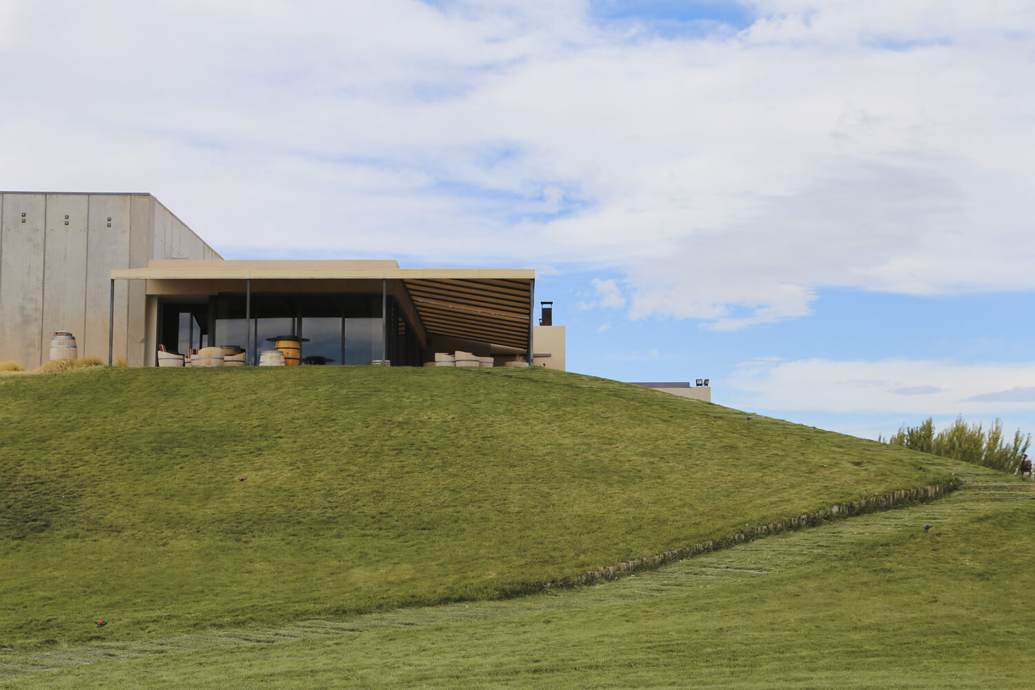 A concrete modern building is built into a hill among the Patagonia wineries in Neuquen