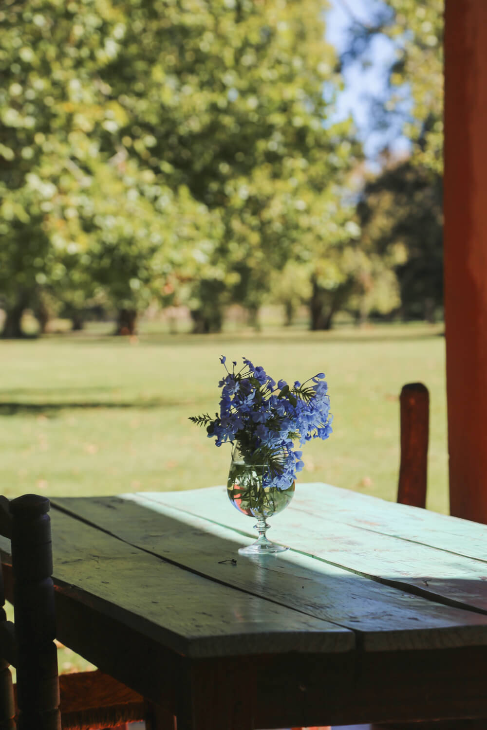 A glass with blue flowers sits on a blue table at the luxury estancia in Buenos Aires