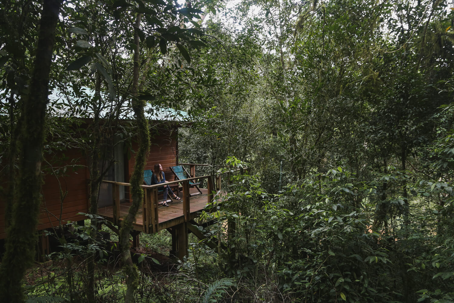 Our room at the Mocona Virgen Lodge was a jungle tree house